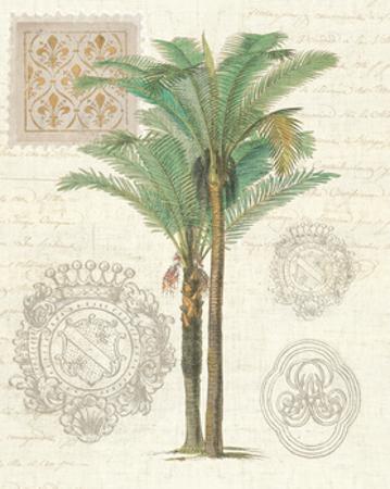 Vintage Palm Study II by Wild Apple Portfolio