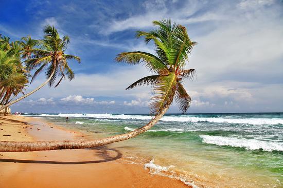 wild-beautiful-beach-sri-lanka
