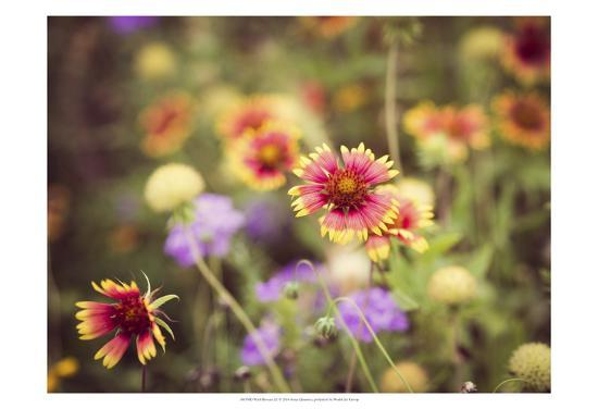 Wild Blooms III-Sonja Quintero-Art Print