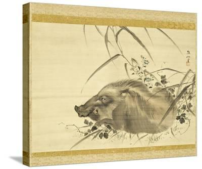 Wild Boar amidst Autumn Flowers and Grasses-Mori Sosen-Stretched Canvas Print