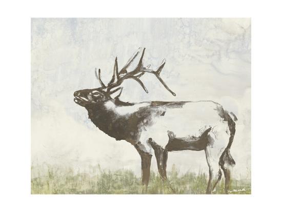 Wild Call I-Jennifer Goldberger-Art Print