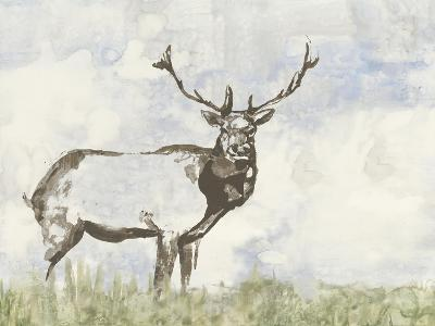 Wild Call II-Jennifer Goldberger-Art Print