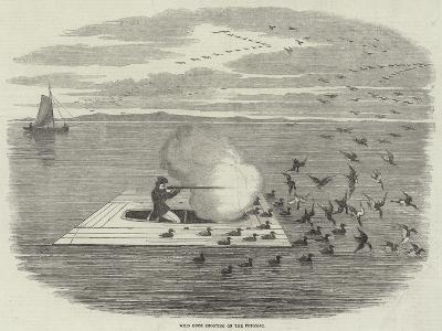 Wild Duck Shooting on the Potomac--Giclee Print