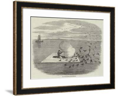 Wild Duck Shooting on the Potomac--Framed Giclee Print