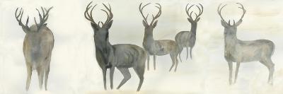 Wild Family-Beverly Dyer-Art Print
