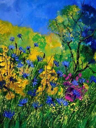 https://imgc.artprintimages.com/img/print/wild-flowers-454170_u-l-q1aua4f0.jpg?p=0