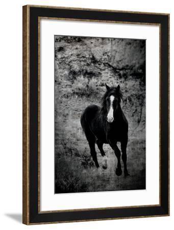 Wild Grit-Deb Lee Carson-Framed Photo