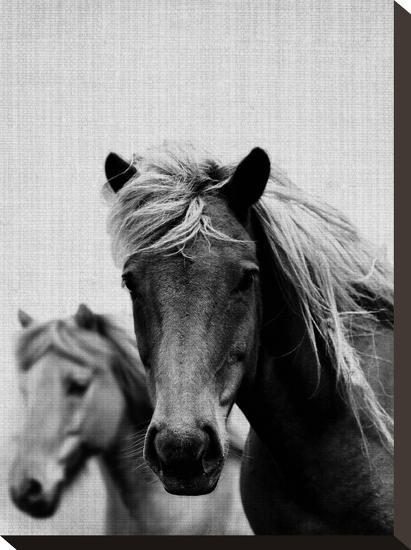 Wild Horses 1-LILA X LOLA-Stretched Canvas Print