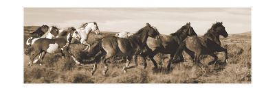 Wild Horses-Claude Steelman-Art Print