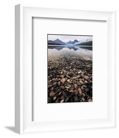 Wild I-PHBurchett-Framed Art Print