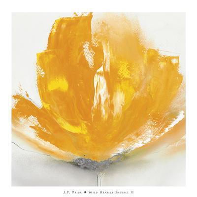 https://imgc.artprintimages.com/img/print/wild-orange-sherbet-ii_u-l-f645p70.jpg?p=0