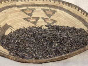 Wild Rice from the Great Lakes Area