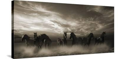 Wild Stampede--Stretched Canvas Print