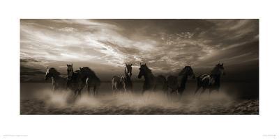 Wild Stampede-Malcolm Sanders-Giclee Print