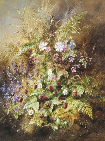Wild Strawberries and a Butterfly-Albert Lucas-Giclee Print