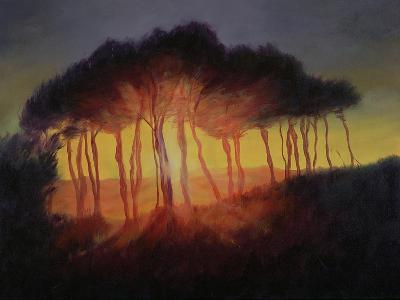 Wild Trees at Sunset, 2002-Antonia Myatt-Giclee Print