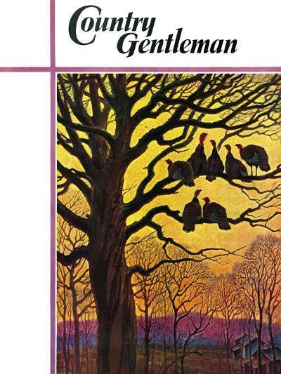 """Wild Turkeys Roosting,"" Country Gentleman Cover, November 1, 1938-Paul Bransom-Giclee Print"