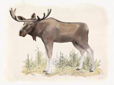 Wilderness Collection Moose-Beth Grove-Art Print
