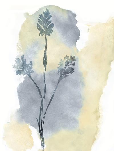 Wildflower Ensemble-Tania Bello-Giclee Print