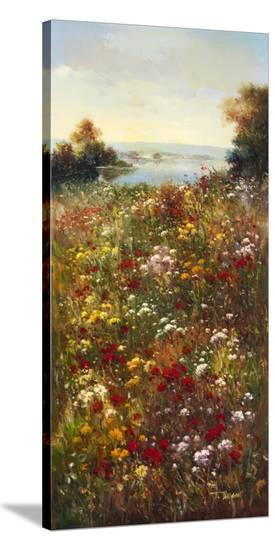 Wildflower Meadow I-Arcobaleno-Stretched Canvas Print