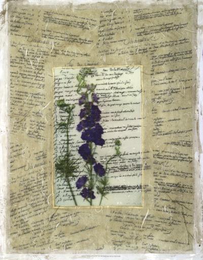 Wildflower Prose II-Jennifer Goldberger-Giclee Print