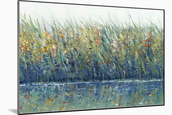 Wildflower Reflection I-Tim OToole-Mounted Art Print