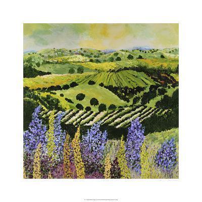 Wildflower Ridge-Allan P^ Friedlander-Limited Edition