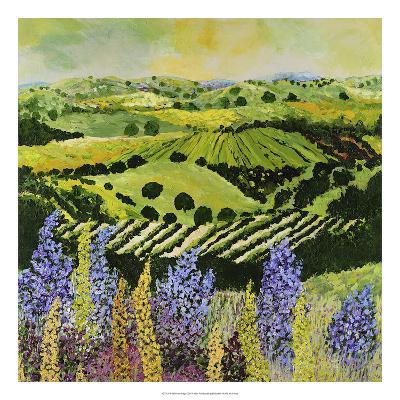 Wildflower Ridge-Allan Friedlander-Premium Giclee Print