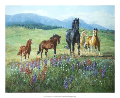 Wildflower Trail-Claire Goldrick-Art Print