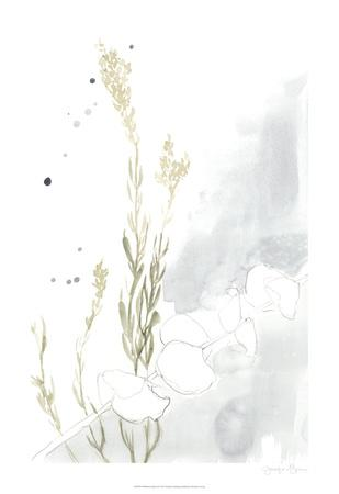 https://imgc.artprintimages.com/img/print/wildflower-triptych-ii_u-l-f97os40.jpg?p=0