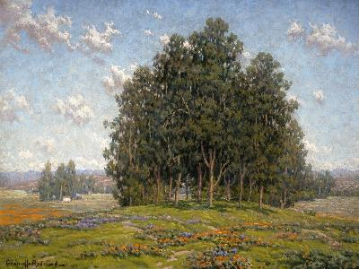 Wildflowers and Eucalyptus-Granville Redmond-Art Print