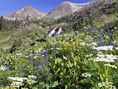 Wildflowers and Waterfall at Yankee Boy Basin Colorado-Robbie George-Photographic Print