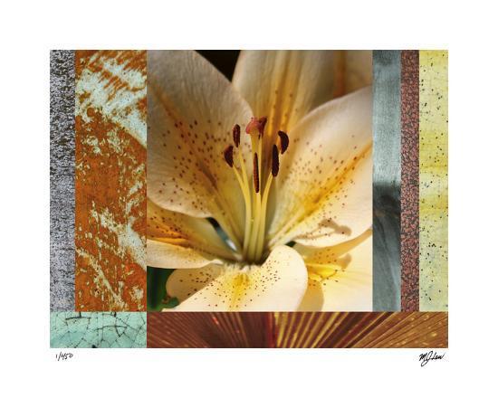 Wildflowers II-Mj Lew-Giclee Print