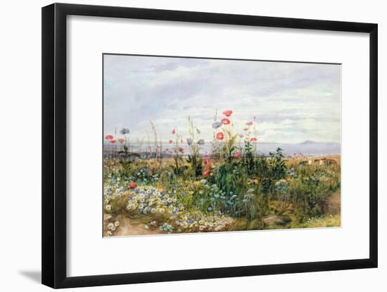 Wildflowers with a View of Dublin Dunleary-Andrew Nicholl-Framed Giclee Print