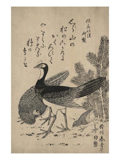 Wildfowl and Pine-Katsukawa Shunsei-Art Print