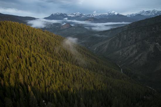 Wildlife Migration Habitat In Wyoming-Joe Riis-Photographic Print