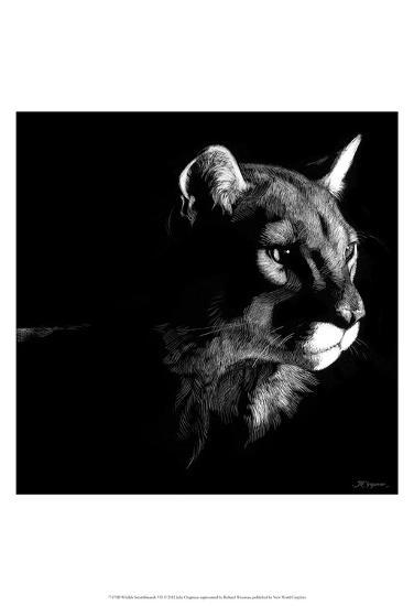 Wildlife Scratchboards VII-Julie Chapman-Art Print