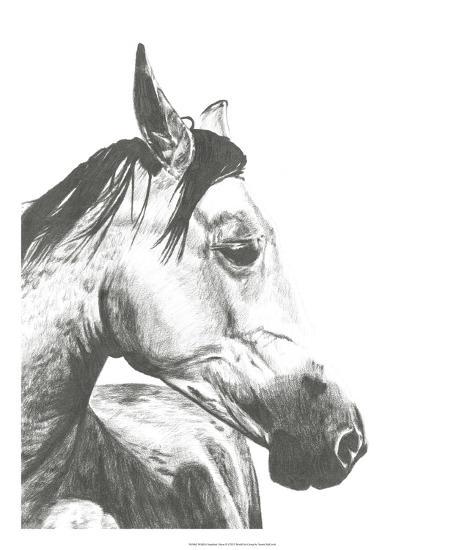 Wildlife Snapshot: Horse II-Naomi McCavitt-Giclee Print