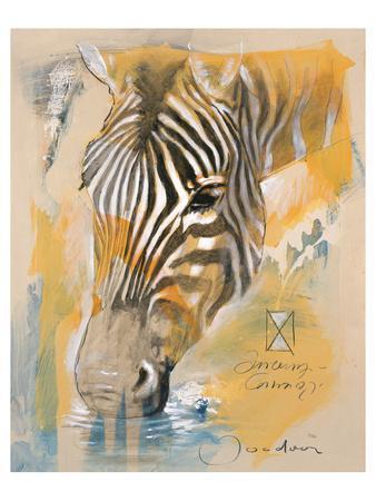https://imgc.artprintimages.com/img/print/wildlife-zebra_u-l-f8dxpp0.jpg?p=0