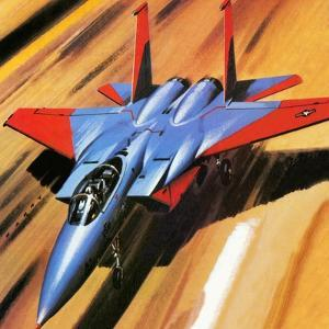 Mcdonnell Douglas F-15 Eagle Jet Fighter by Wilf Hardy