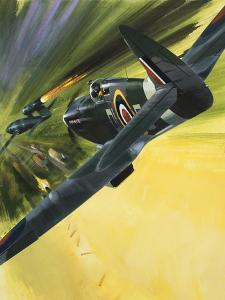 Spitfire and Doodle Bug by Wilf Hardy