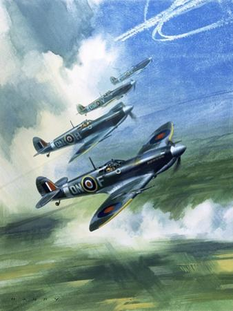 The Supermarine Spitfire Mark Ix by Wilf Hardy