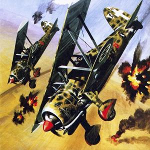 Two Fiat Cr 42S by Wilf Hardy