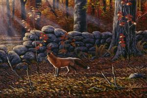 Autumn Reds - Red Fox by Wilhelm Goebel