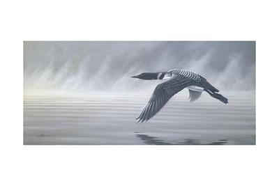 Misty Flight