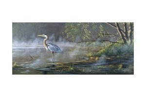 Quiet Cove - Great Blue Heron by Wilhelm Goebel