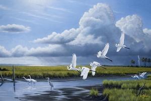 Summer Storm Egrets by Wilhelm Goebel