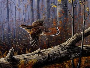 Windfall Glider - Ruffed Grouse by Wilhelm Goebel