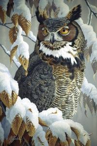 Winter Watch - Great Horned Owl by Wilhelm Goebel