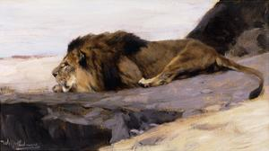 A Resting Lion by Wilhelm Kuhnert